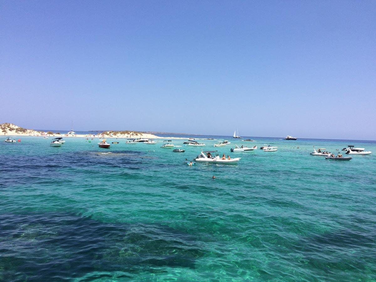 Arena Catamaran Ibiza playa