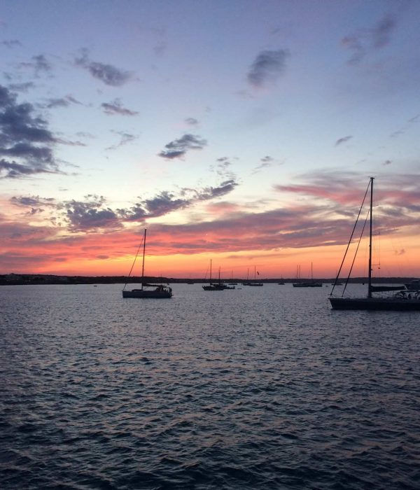 arena catamaran sunset
